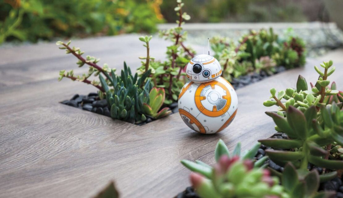 Best Remote Control BB8 Rotbot Toys