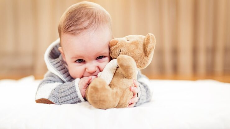 Best Teddy Bear for Baby
