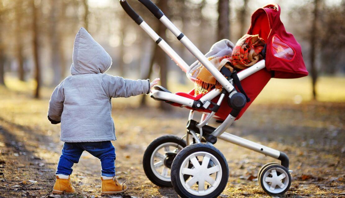 Best Umbrella Strollers for Toddler